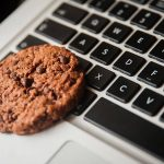 Cookie sitting on top of a laptop keyboard